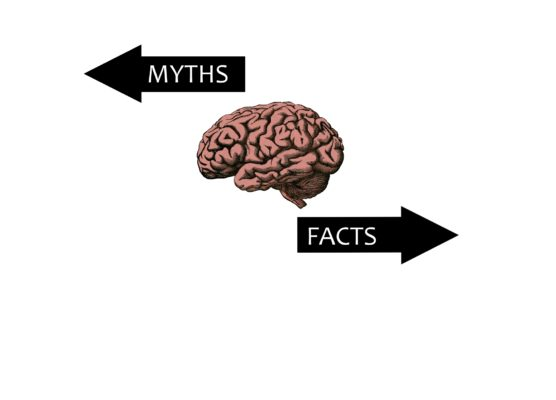 Six Common Myths About the Brain and Learning