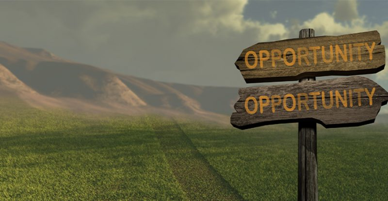Now Is the time to Discover Opportunities